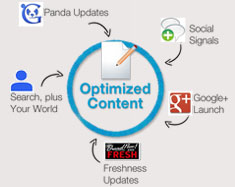 Content Optimization1